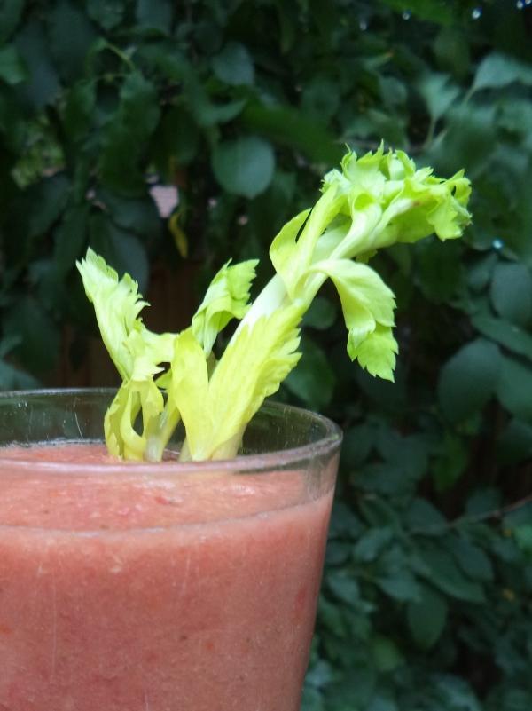 2013-08-25 Tomato Juice and Celery