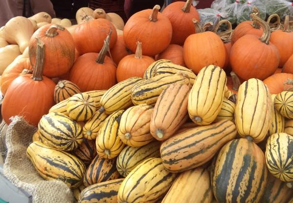 2013-11-09 Boulder Farmers Market (10)