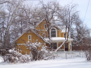2014-02-05 Niwot Snowy Day (3)