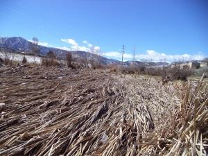 2014-03-14 Boulder Creek Post Flood